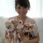 釈由美子の愛犬さくらが天国にいった理由!整形か精神的に劣化?